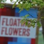Lobke-Meekes_FloatingFlowers_01