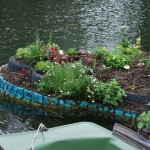 Lobke-Meekes_Floating-Flowers_12