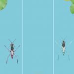 screenshot app_muggenlarve spel